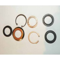 KIT-STEERING BOX SECTOR SHAFT SEAL STC889