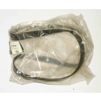 MAIN DRIVE BELT V8 4.4L DOHC G-CAT              PQS000100