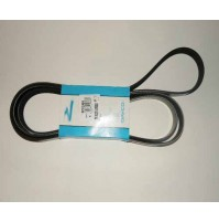 DRIVE BELT PRIMARY 5.0L DIS3+4 G-CAT          LR011345